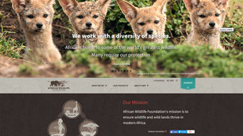 Drupal -- African Wildlife Foundation