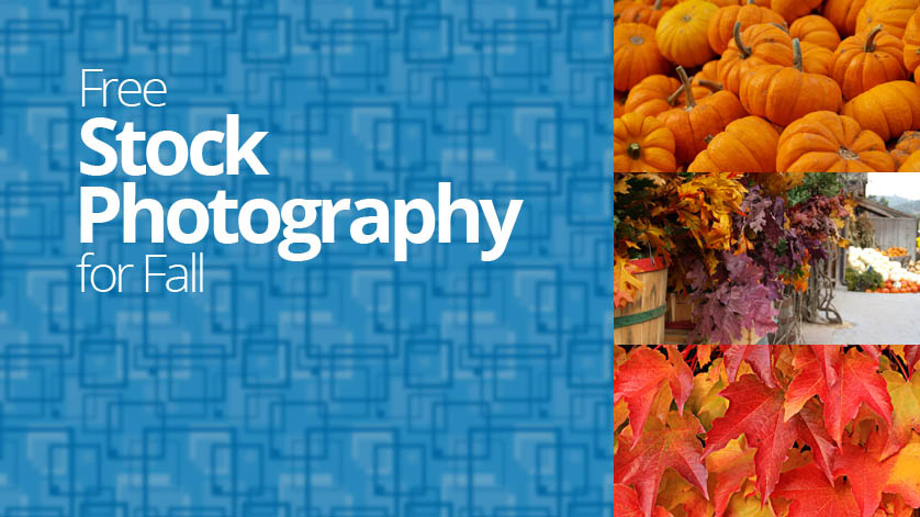 Free Stock Images for Fall